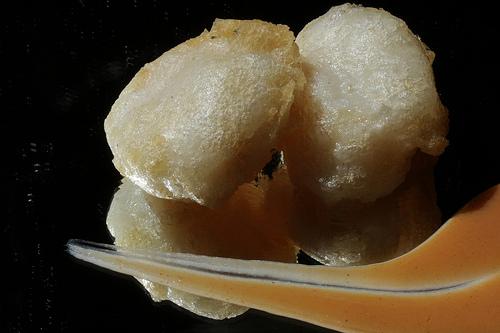 Vieiras en Tempura con salsa de Carabineros.